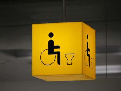 disabled toiler